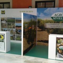 Montaje y Desmontaje Perfilería Oculta AgroSevilla