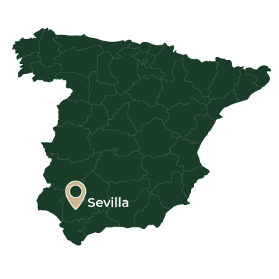 Situacion_Mapa_Web